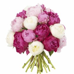 Mixed-Peonie-Bouquet[2]