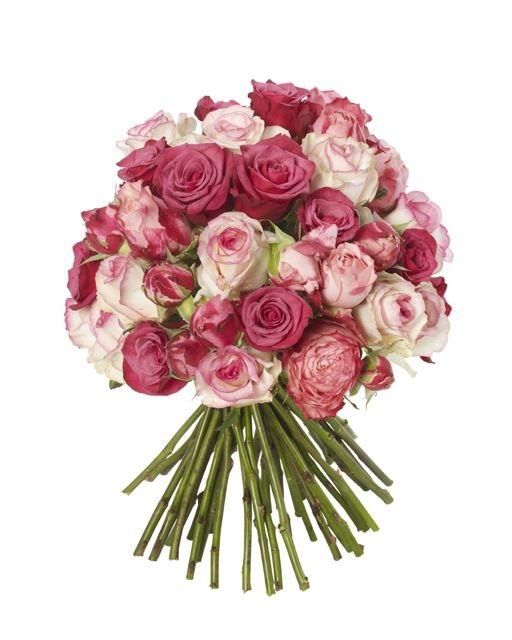 Shocking pink and raspberry bouquet the flower stand chelsea shocking pink and raspberry bouquet mightylinksfo